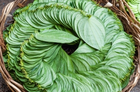 AvdBrink_India2017_BangaloreKRmarketgreenleaves