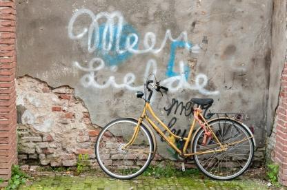 AvdBrink_NL2017_Nijmegenyellowbike